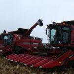 000 case ih axial flow 8230 kukurydza 2014 150x150 Case IH Axial Flow   solidna wydajność przy młóceniu soi