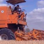 Bizonowe zniwa 2015 filmy 150x150 Jak wykorzystać hale stalowe w rolnictwie?