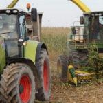 CGFP kukurydza na kiszonke John Deere Case Claas Deutz Fahr Steyr 150x150 Jesienny siew koniczyny. W polu Deutz Fahr 6160 + Pottinger Terrasem R3 (VIDEO)