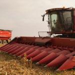 CGFP zniwa kukurydziane 2015 150x150 Żniwa 2020 w CGFP Wojnowo z kombajnami John Deere 790i oraz Case IH 9240, 8240, 8230 – FOTO