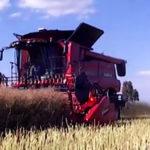 Zniwa 2015 podsumowanie filmy rolnicze 150x150 Styczniowe dokaszanie kukurydzy i wtopa John Deere WTS 9560i   VIDEO