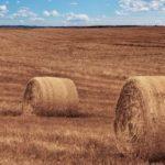 monitoring maszyn 150x150 Znaczenie środków smarnych w rolnictwie