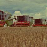 Claas pokaz zniwny Agro Land 2016 foto 150x150 FENDT 1050 Vario na kujawskich polach   FOTO