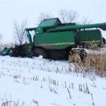DSCF7220 150x150 Pech kombajnu John Deere WTS 9560 w zimowym docinaniu kukurydzy   FOTO