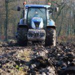 DSCF7579 150x150 New Hollandy w kukurydzy   FOTO