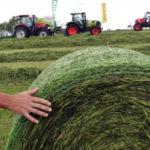 Zielone Agro Show 2018 150x150 AGRO TECH Minikowo 2018 – fotorelacja z wystawy