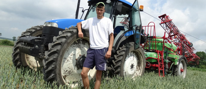 Ratowanie pszenicy po gradzie, w polu New Holland TD5050 + Krukowiak.