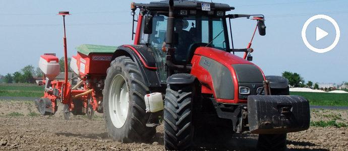 Valtra T 171 i 6 rzędów od Gaspardo w siewie kukurydzy 2018