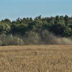 DSC01718 150x150 Żniwa 2018, kombajny John Deere S790i i Case IH 8230 w pszenicy – FOTO