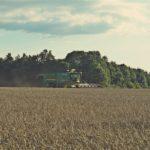 DSC01727 150x150 Żniwa 2018, kombajny John Deere S790i i Case IH 8230 w pszenicy – FOTO