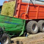 Budisa Bagger kukurydza kiszonka 2018  film 150x150 CLAAS y w akcji – zbiór lucerny w RSP Kazin   VIDEO