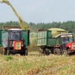 Ursus kukurydza kiszonka 2018  film 150x150 Klasyka polskiej kukurydzy. W akcji Ursus, Zetor, John Deere, Fortschritt i Claas Jaguar (VIDEO)