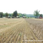 IS DSCF7039.JPG 150x150 4x Claas Lexion i... Bizon Z056 Super w akcji!   FOTO