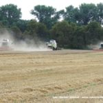 IS DSCF7070 2.JPG 150x150 4x Claas Lexion i... Bizon Z056 Super w akcji!   FOTO