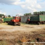 IS DSCF7074 2.JPG 150x150 W suszy też się można zakopać! Ursusy i Claas Jaguar 880 w kukurydzy   FOTO
