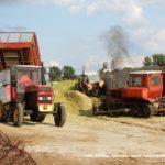 IS DSCF7085.JPG 150x150 W suszy też się można zakopać! Ursusy i Claas Jaguar 880 w kukurydzy   FOTO