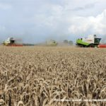 IS DSCF7153 2.JPG 150x150 4x Claas Lexion i... Bizon Z056 Super w akcji!   FOTO