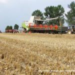 IS DSCF7191.JPG 150x150 4x Claas Lexion i... Bizon Z056 Super w akcji!   FOTO