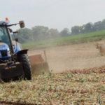 New Holland kopanie cebuli 2018  film 150x150 Kopanie cebuli z John Deere 5820 i 5090R + Krukowiak   WIDEO