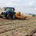 IS DSCF7065.JPG 150x150 Zbiór cebuli na Kujawach 2018, w polu New Holland, DeWulf, Samon   FOTO