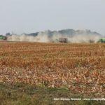 IS DSCF7095.JPG 150x150 Jelenie w kukurydzy, na czele z sieczkarnią John Deere 7380i   FOTO
