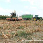 IS DSCF7109 2.JPG 150x150 Jelenie w kukurydzy, na czele z sieczkarnią John Deere 7380i   FOTO