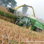 IS DSCF7209.JPG 150x150 Jelenie w kukurydzy, na czele z sieczkarnią John Deere 7380i   FOTO