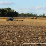 IS DSCF7027.JPG 150x150 New Hollandy w kukurydzy   FOTO