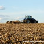 IS DSCF7050.JPG 150x150 New Hollandy w kukurydzy   FOTO