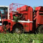 Wielkie maszyny kombajny PMC cz3 2019  film 150x150 BCMH SB 9000    francuskie kombajny na kujawskich polach – zbiór groszku 2018