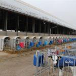 KR Kietrz foto2 150x150 KR Kietrz – kulisy funkcjonowania jednego z największych polskich gospodarstw rolnych