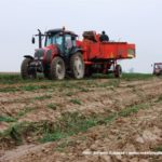 IS DSCF7017.JPG 150x150 Ursus C 330   legenda polskiego rolnictwa