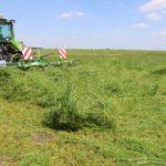 IMG 5780 1 1024x683 150x150 Zielone AGRO SHOW 2019 – posumowanie pokazów maszyn zielonkowych