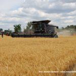 IS DSCF7043 150x150 Fendt IDEAL na Wielkopolskim polu   FOTO