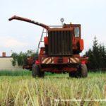 IS DSCF7018 1 150x150 Polska sieczkarnia samojezdna ORKAN Z350/3 – zielonkowy unikat – FOTO