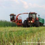 IS DSCF7021 150x150 Polska sieczkarnia samojezdna ORKAN Z350/3 – zielonkowy unikat – FOTO