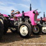 IS DSCF7056 150x150 Wyścigi traktorów Grene Race Wielowieś 2019   FOTO