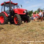 IS DSCF7080 150x150 Wyścigi traktorów Grene Race Wielowieś 2019   FOTO