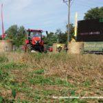 IS DSCF7092 2 150x150 Wyścigi traktorów Grene Race Wielowieś 2019   FOTO