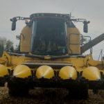 New Holland TC kukurydza 2019  film 150x150 Zetor 8145 w holenderskiej wersji eksportowej   WIDEO