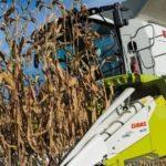 jak przygotowac kombajn do zbiorow kukurydzy 150x150 Kontrola kombajnu po żniwach. Dlaczego jest tak istotna dla użytkowania maszyny?