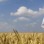 A srodki ochrony roslin 150x150 Ekoplon   Pandemia nie spowolniła dostaw dla rolnictwa