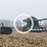 John Deere W650 w kukurydzy film 150x150 Duet John Deere 6195M i 6155M w wiosennej uprawie 2021  VIDEO