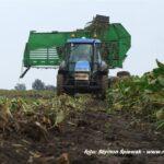 IS DSCF0253 150x150 New Holland CR 9.90 Revelation w kukurydzy   FOTO