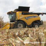 IS IMG 0166 150x150 Fendt IDEAL w ekstremalnym zbiorze kukurydzy   FOTO