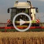 Claas Lexion 3x zniwa 2021 film 150x150 Ekstremalne sianokosy w Ranczo Farm – w polu: McCormick, Welger, John Deere, Manitou   VIDEO